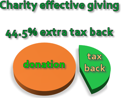 charity giving pie chart